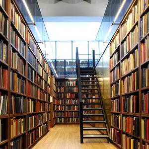 Библиотеки Ельников