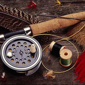 Охотничьи и рыболовные магазины Ельников